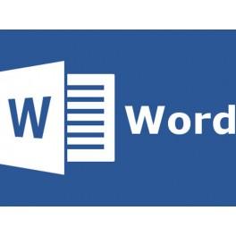 Curso Online Word 2013